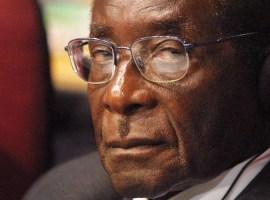 Tsenengamu stands his ground on Mugabe's retirement
