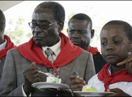 'Refuse to sponsor Mugabe bash'