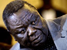 Anti-Mugabe election coalition takes shape in Zimbabwe