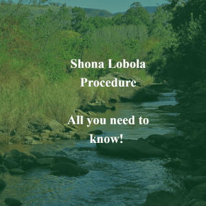 All You Need To Know About the Shona Lobola Procedure! - Zimbabwe