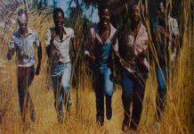 bhundu boys tsvimbo dzemoto