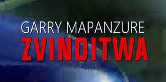 garry mapanzure zvinoitwa zimdancehall freestyle