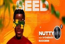 nutty o ft stonebwoy success