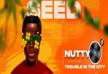 nutty o trouble in the city
