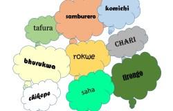 shona afrikaans word bubbles