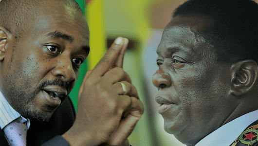 Presidential election: What happens if Chamisa goes to court?