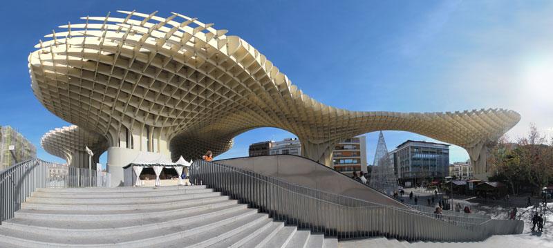 Paddestoelen van Sevilla