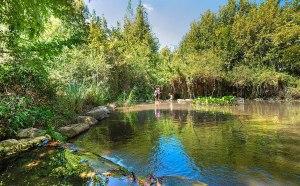 פארק הירדן האטרקציה המומלצת ביותר בצפון ובגולן שיט בנהר הירדן וטיול רינג'רים