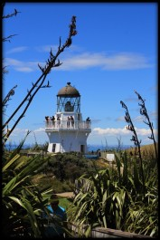 Lighthouse, Manukau Heads. Image: Su Leslie, 2016