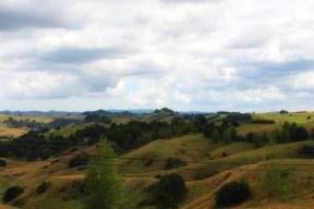 Farmland around Glen Murry, NZ. Image: Su Leslie, 2017