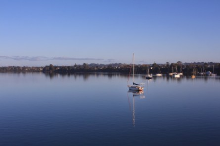 Herald Island and the upper Waitemata Harbour, from Greenhithe Bridge. Image: Su Leslie, 2017