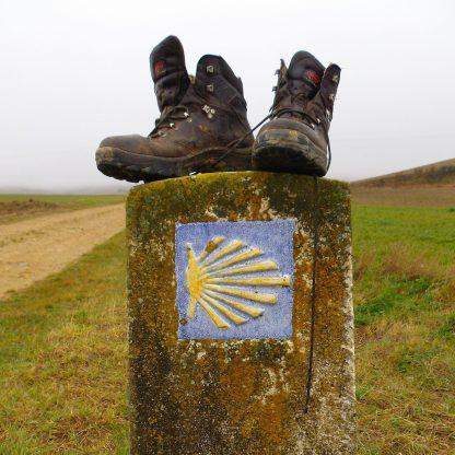 Shelll boots