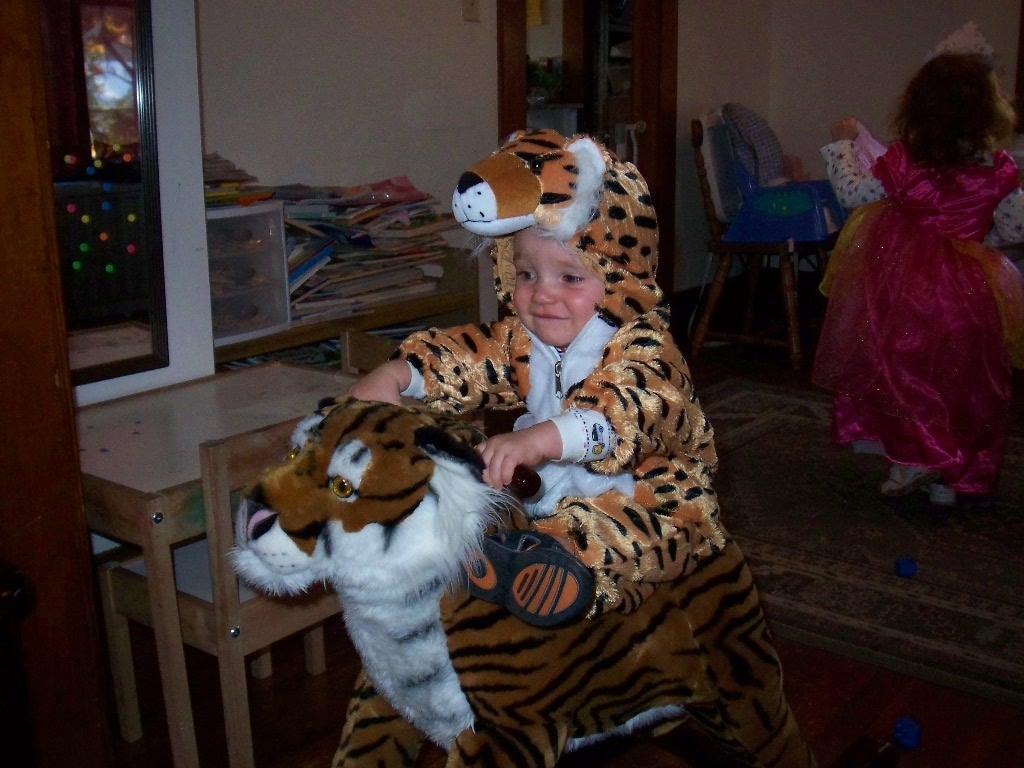 Tiger on the Rocking Tiger