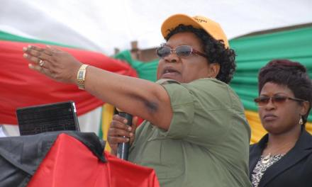 Mnangagwa should be court marshaled for human rights violations: Mujuru