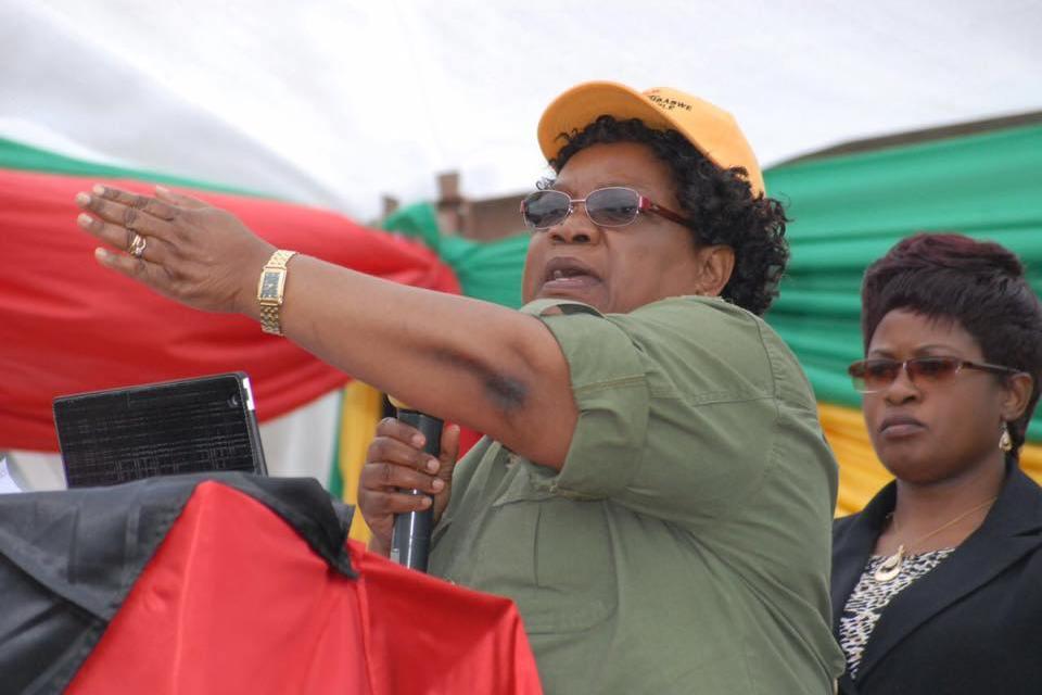 Mnangagwa should be court marshaled for human rights violations: Mujuru