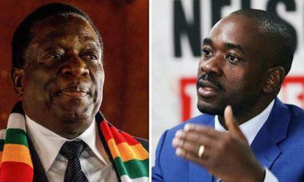 ED and I should rotationally rule Zim: Chamisa
