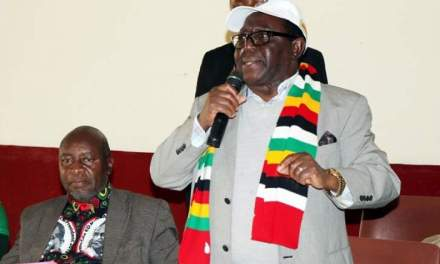 Zanu-PF dismisses army uniform distribution claim