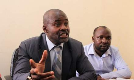 'ZANU PF Youths are untouchable' says Mliswa