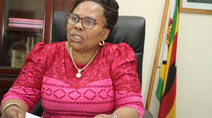 Cabinet cancels six ZMDC tenders
