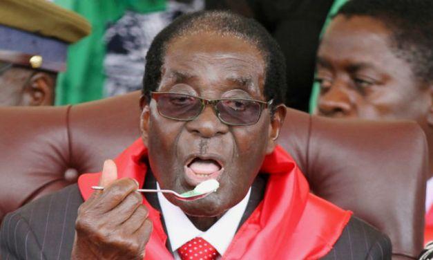 ZANU PF Youths celebrate Mugabe's birthday