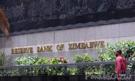 RBZ dismisses fake news on new currency
