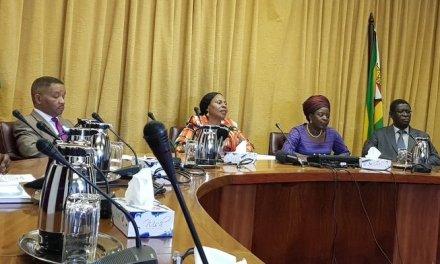 Cabinet announces major reforms for ZESA, AirZim, GMB