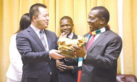 ED throws Chinese investors a challenge