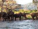 Zimbabwe tourism earnings surpass $1 billion