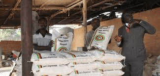 Fears of imminent maize meal price increases