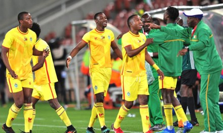 BREAKING: No Cosafa hosting for Zifa. . . Gvt