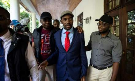 Chamisa's diplomatic offensive yields nothing
