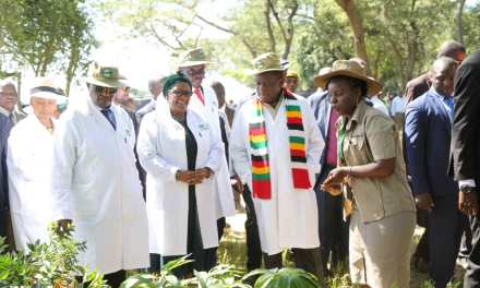PICS: Mnangagwa, Chiwenga & Mohadi Lead Up Clean-Up Campaign At Lake Chivero