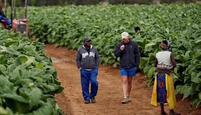 White farmers urged to get offer letters