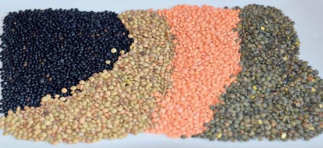 Linsen - Sorten - gesund - Hülsenfrüchte - Infos - Tipps - Arten - Informationen - Wissenswertes - essen - Lebensmittel