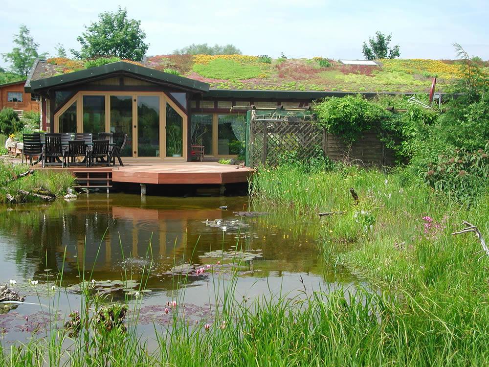 Dachbegrnungen von Zindler Garten und Landschaftsbau