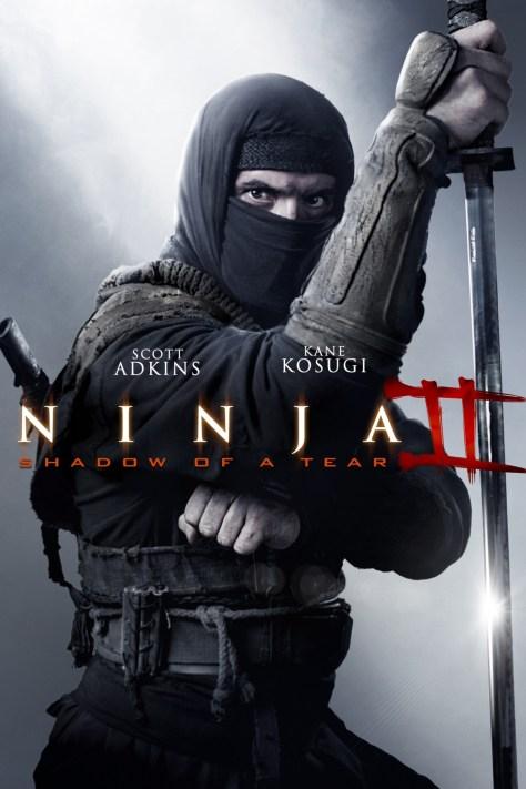 ninja 2 2013