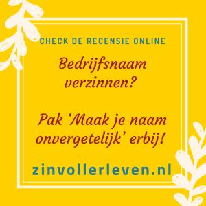 Bedrijfsnaam verzinnen Pak 'Maak je naam onvergetelijk' erbij – recensie zinvollerleven.nl