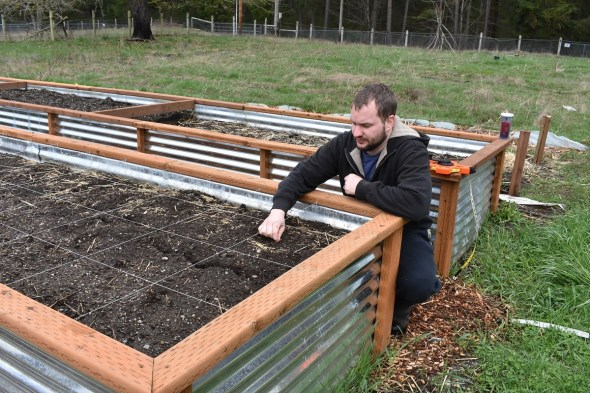 More Reasons Why Raised Garden Beds Are the Way to Go!