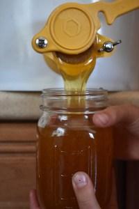 Topping off the Honey Harvest