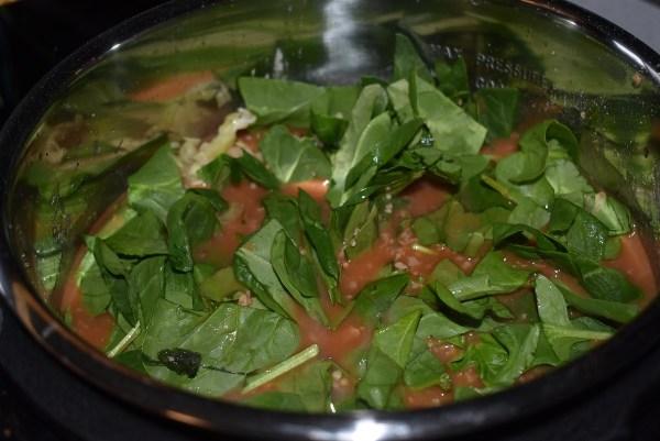 Lasagne Soup - THM Style 7