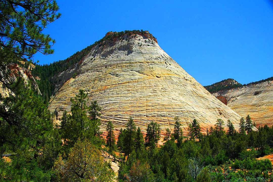 Checkerboard Mesa  Zion National Park Hikes  Zion