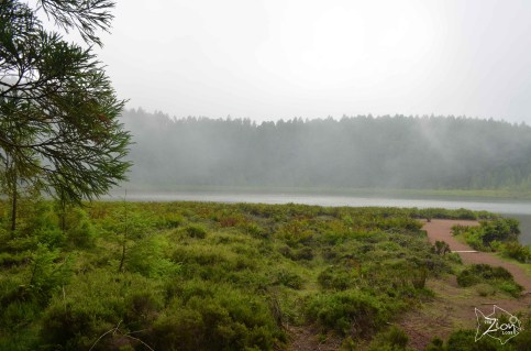 So a car took us in while hitchhiking to reach a view point and we ended up here! Lagoa do Canario, Sao Miguel Azores.
