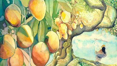 Photo of The Mango Tree