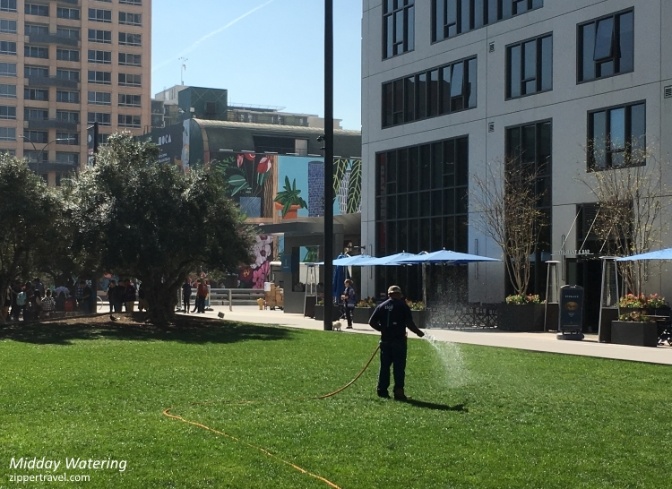 Watering lawn downtown Los Angeles