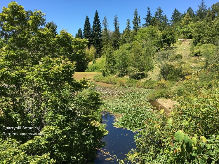 Quarryhill Gardens pond Valley of the Moon Sonoma