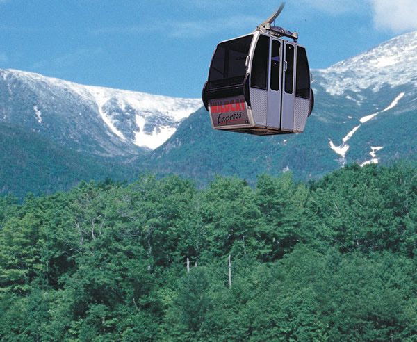 ZipRider at Wildcat Mountain Ski Area
