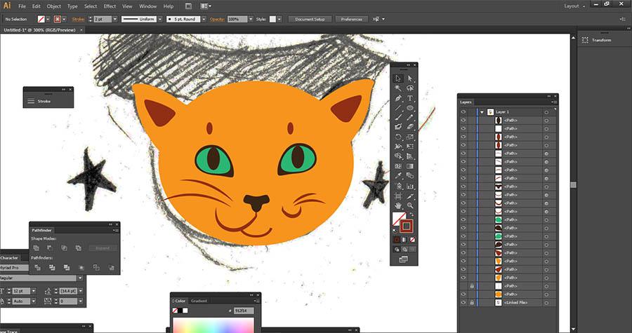 Ginger cat in Adobe Illustrator