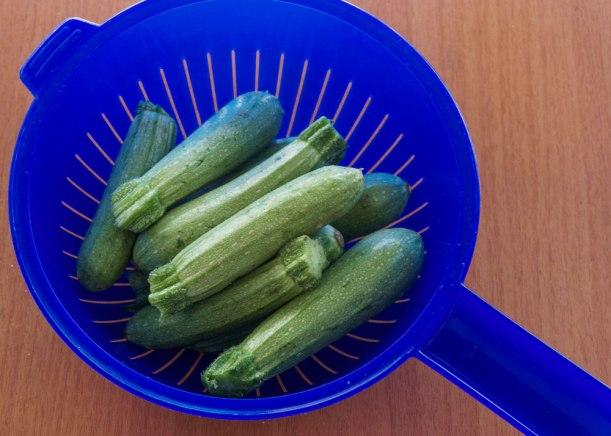 Kleine helle Zucchini