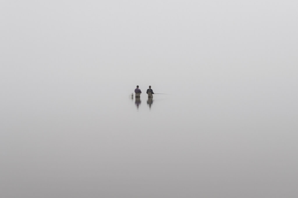 Makskernieki - Zive LV