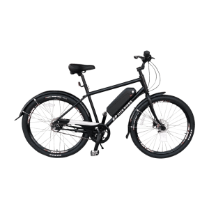 ebike conversion – image